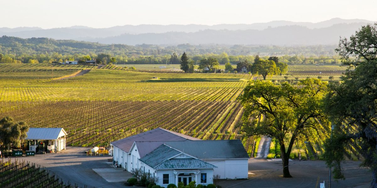 """The Best Weekend Event in Wine Country """"Experience Alexander Valley"""" 1"""
