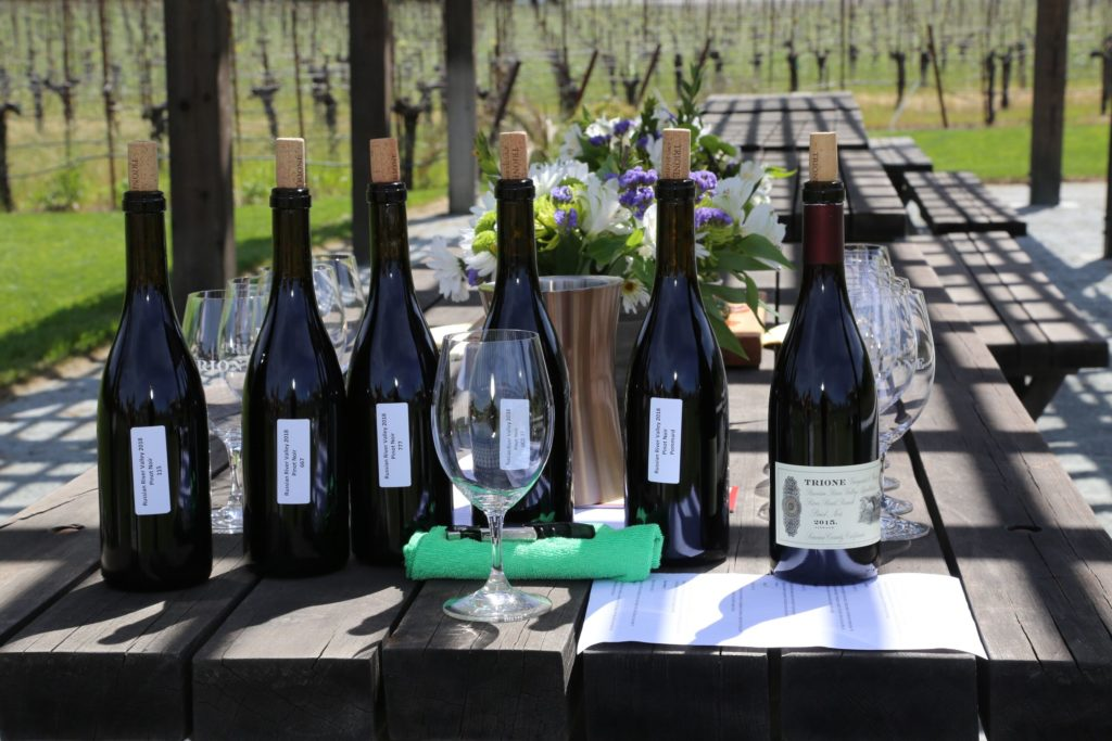 """The Best Weekend Event in Wine Country """"Experience Alexander Valley"""" 3"""