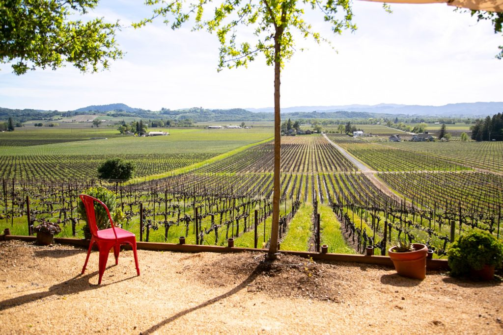 """The Best Weekend Event in Wine Country """"Experience Alexander Valley"""" 5"""