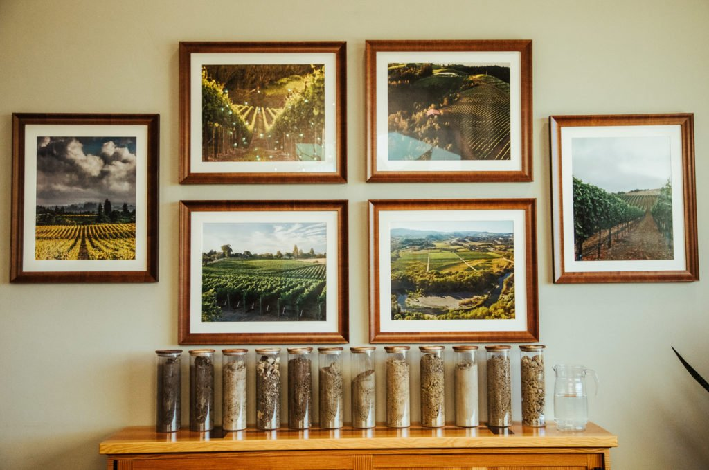 Experience the Gary Farrell Salon Vineyards & Winery in Healdsburg 7