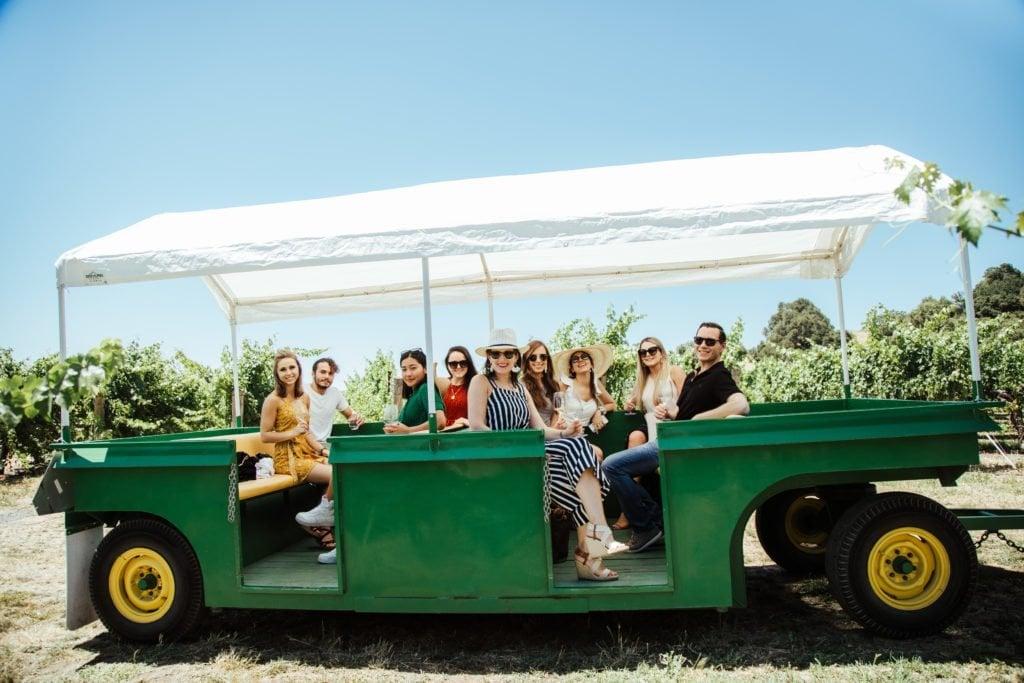Picnic (Almoço) de Verão com uma Vista Espetacular na Vinícola Robert Young 7